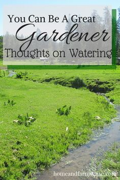 Part three of the series _You Can Be A Great Gardener._  This post shares different theories on watering your garden.