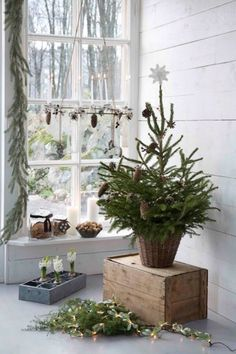 Christmas decor using Greenery in a  Cottage way!