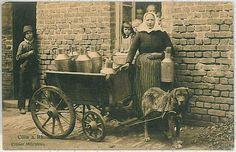 Ansichtskarte  VINTAGE POSTCARD: GERMANY -  Köln Koln : DOG MILK CART !