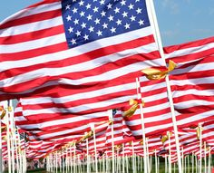 Happy Flag Day, 2013