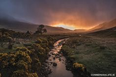 """Connemara Life 2015 