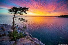 Hanko, Finland by Niklas Sjöblom Finland Summer, Scandinavian Countries, Water Reflections, Archipelago, Ciel, Wonders Of The World, Landscape Paintings, Natural Beauty, Sunrise