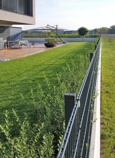 Terrace / Garden – WhiteCube – Wiener Neustadt - All About Tropical Landscaping, Tropical Garden, Garden Landscaping, Terrace Garden, Water Garden, Palmers Garden Centre, Casa Art Deco, Petunias, Landscaping