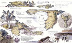 Chronicle Books - The Wildlife of Star Wars - A Field Guide