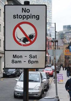 no stopping.  just like work... and home... and, well, just about everything...