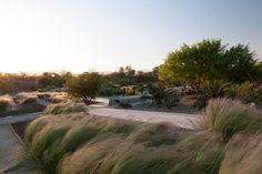 Quilapilun_Botanic_Garden_Park-Panorama_Architects-13-SW « Landscape Architecture Works | Landezine