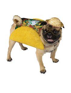 Taco Kostüm für Hunde gelb-bunt. Aus der Kategorie Karnevalskostüme / Hundekostüme. Sieht er nicht zum Anbeißen lecker aus? Verwandeln Sie Ihren treuen Vierbeiner in einen schmackhaften mexikanischen Snack mit diesem großartigen Taco Hundekostüm. Dieses außergewöhnliche Hunde-Outfit wird mit Sicherheit für jede Menge Aufmerksamkeit sorgen und macht Ihren Fiffi zum Star der Kostüm-Party.
