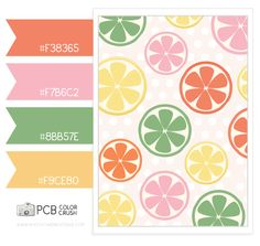Color and Pattern Crush -  6.9.2013