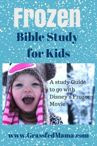 Teachable Moments: Frozen Bible Study - Grassfed Mama...OH GOSH, seriously I want to do this!!!!!!!