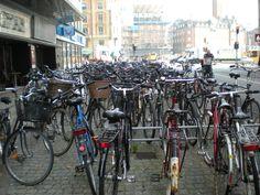 bikes everywhere in Copenhagen, Denmark
