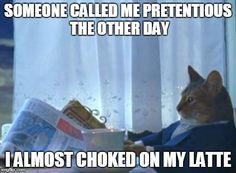 I Should Buy A Boat Cat | SOMEONE CALLED ME PRETENTIOUS THE OTHER DAY I ALMOST CHOKED ON MY LATTE | image tagged in memes,i should buy a boat cat | made w/ Imgflip meme maker