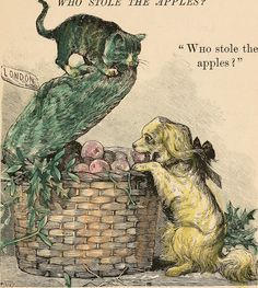 """Dog and cat try to figure out """"Who Stole the Apples"""". Public domain. Kitty."""