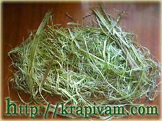 Снятые волокна и кора крапивы
