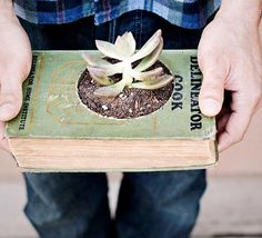 "upcycle book into a plant ""vase""    #recycle #diy #crafts"