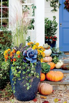 Fall Containers Anyone Can Recreate Bountiful Container with Ornamental Kale and Cabbage Fall Flower Pots, Outdoor Fall Flowers, Autum Flowers, Purple Flowers, Mums In Pumpkins, Ornamental Kale, Fall Containers, Fall Container Gardening, Succulent Containers
