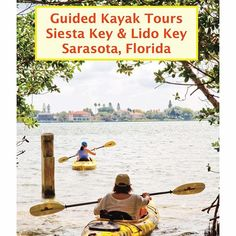 Have you kayaked the mangrove tunnels on Lido or Siesta Key? So magical, you never know what you're going to see! Discover for yourself on a guided kayak tour with Island Style Watersports For more info visit our website at www.MustDo.com
