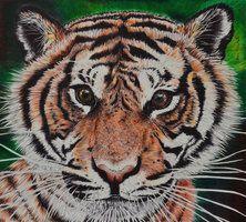 little tiger ballpoint pen drawing, bic illustration http://saraportrait.deviantart.com/