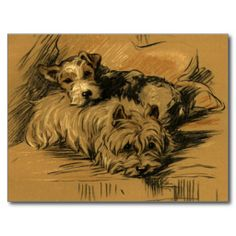 =>Sale on          Vintage Terrier and Westie Post Card           Vintage Terrier and Westie Post Card in each seller & make purchase online for cheap. Choose the best price and best promotion as you thing Secure Checkout you can trust Buy bestDeals          Vintage Terrier and Westie Post ...Cleck See More >>> http://www.zazzle.com/vintage_terrier_and_westie_post_card-239222472038428323?rf=238627982471231924&zbar=1&tc=terrest