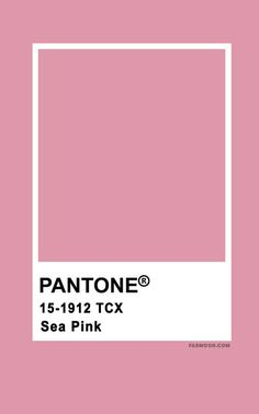 Gorgeous autumn wedding colors 2019 — Make your autumn wedding stand out with an amazing and last forever color combos. Blackberry + Dark Blue + Maroon + Spicy Orange { pantone color } and Wine. Pantone Colour Palettes, Pantone Color, Pantone Red, Pantone Swatches, Color Swatches, Colour Pallete, Colour Schemes, Color Trends, Fall Wedding Colors