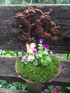 I has this old iron bird feeder in storage but this year I filled it with moss some volunteer violas and a fairy - a conversation starter for sure !