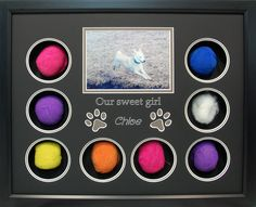 Celebrating this sweet girl's life with a custom pet memorial. Her 8 favorite balls colorfully surround her photo. The paw print cutout accent her name. What a sweet display for a sweet girl! Dog Shadow Box, Shadow Box Frames, List Of Animals, Pet Memorials, Losing A Pet, Sweet Girls, Your Pet, Display, Memories