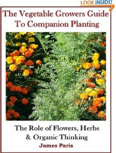 13 November 2013 : Companion Planting: The Vegetable Gardeners Guide. The Role of Flowers, Herbs & Organic Thinking by James Paris   http://www.dailyfreebooks.com/bookinfo.php?book=aHR0cDovL3d3dy5hbWF6b24uY29tL2dwL3Byb2R1Y3QvQjAwQldRQTBRQS8/dGFnPWRhaWx5ZmItMjA=