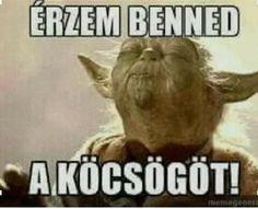 37 Hilarious Memes That Won't Make Sense Unless You're a Stoner – 2018 - Wochenende Lustig Freitag Memes Humor, Jokes, 420 Memes, Yoda Funny, Hilarious, Yoda Meme, Troll Meme, Hilarious Stuff, Bullshit