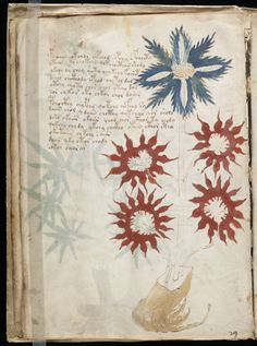 A page from the mysterious Voynich manuscript, which is undeciphered to this day. // Exact date of creation unknown, thought to have been written in the 15th or 16th century.