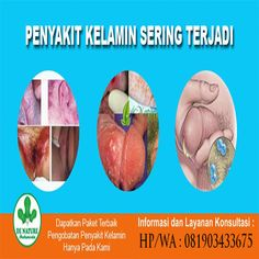 [licensed for non-commercial use only] / Obat Gonore di Apotik Herbalism, Blog, Sign, Blogging, Herbal Medicine, Signs