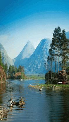 Decent Image Scraps: Nature 1