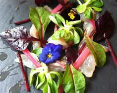 Cured bass with rhubarb. leaves and flowers Allergies, Bass, Dairy Free, Cabbage, The Cure, Gluten, Leaves, Stuffed Peppers, Pure Products