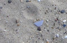 Gorgeous piece of lavender sea glass on the shores of the Chesapeake Bay