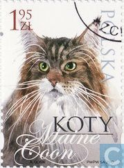 Postage Stamps - Poland [POL] - Cats