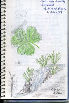 Nature Notebooks-Like a Travel Journal 7