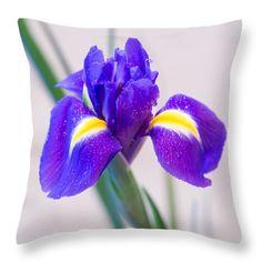 Wonderful Iris With Dew Throw Pillow by Yana Reint #YanaReint #YanaReintFineArtPhotography #FineArt #pillow #duvetcover #homedecor #ArtForHome #Iris #flowers