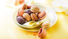 16 macarons, chocolat, vanille, café, framboise