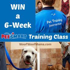 Win a 6-Week PetSmart Dog Training Class!  http://woofwoofmama.com/2014/01/17/petsmart-dog-training-giveaway