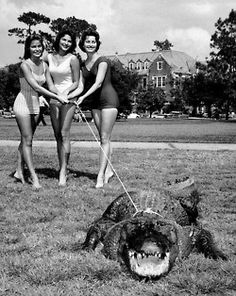 Old Florida  (Looks like the University of Florida in the 1950s, one of the older buildings in the background, co-eds taking Albert for a walk.)