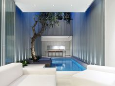 #architecture #courtyard #pool   how to stay cool with architecture   @meccinteriors   design bites