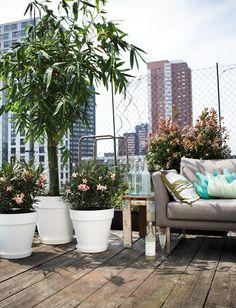 Met Elho zet je de bloemetjes buiten in prachtige kunststof bloempotten #garden #plants