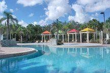 swimming pool Great Wolf Lodge, Condos For Rent, Hotel Motel, Jungle Safari, Florida Vacation, Sea World, Orlando Florida, Universal Studios, Disney Vacations