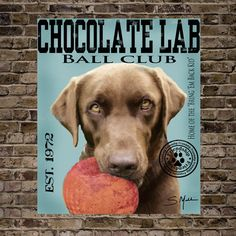 Chocolate Lab Ball Club Print 16x20 (See last photo for other options)