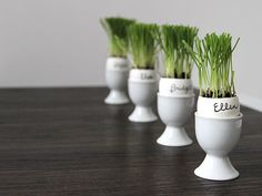 Grassy Egg Holders | Fun Easter Projects for the Family >>> http://blog.diynetwork.com/maderemade/2015/03/26/easy-easter-diy-projects-for-the-family/?soc=pinterest