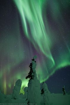Alaskan Northern Lights, photographed by Patrick Endres