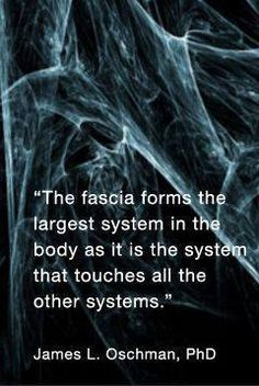 Have you heard of Fascia? It is the connective tissue that wraps around attaches to separates and stabilizes your muscles & internal organs. Fascia can get adheared & cause tightness & pain in your body. Massage is a great way to release stuck fascia a Massage Quotes, Massage Tips, Massage Benefits, Massage Techniques, Craniosacral Therapy, Cupping Therapy, Massage Therapy, Yin Yoga, Acupuncture