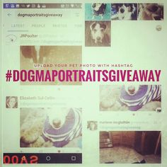 Thank you humans for uploading your buddy photos. There's still time to upload with #dogmaportraitsgiveaway. I'm drawing (and painting) a winner on Monday! #contest #raffle #draw #giveaway #pets #portrait #cats #dogs #sweepstakes #art