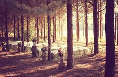 A rustic forest wedding / http://ourloveinoctober.blogspot.com.au/2012/05/wedding-love-rustic-forest-wedding.html