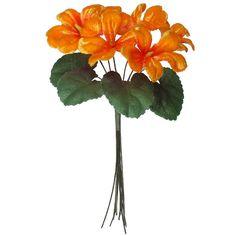 Bouquet of 6 Orange Ombre Violets ~ Czech Republic