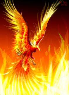 The phoenix, or fire-bird. I'm betting it's a phoenix. Magical Creatures, Fantasy Creatures, Greek Creatures, Phoenix Tattoo Design, Tattoo Phoenix, Phoenix Bird, Phoenix Wings, Phoenix Rising, Mythological Creatures