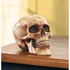 Now, here's a real bonehead! A realistic skull crafted in alabastrite.